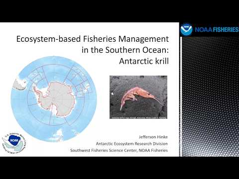 Ecosystem Based Fisheries Management In The Southern Ocean: Antarctic Krill