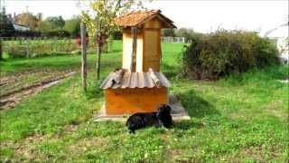 kompost toilette selber bauen. Black Bedroom Furniture Sets. Home Design Ideas