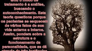 AS PRINCIPAIS TEORIAS DA PSICOLOGIA NO SÉCULO XX