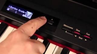 Roland Digital Piano — Duplex Scale