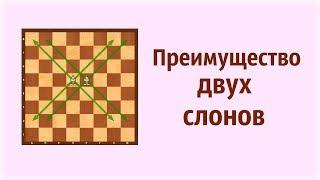 Преимущество двух слонов\ Шахматы видео