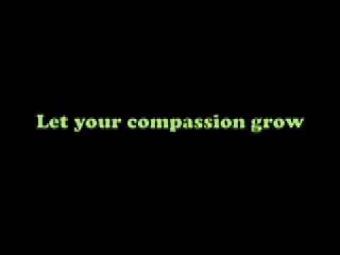 Let them shine- Caroline Berntson