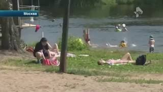 Невеста утонула на собственной свадьбе. Москва
