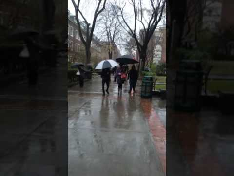 Walking on campus at Brooklyn Colleg