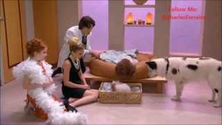 Dog With A Blog  Stan Has Puppies | Puppies Are Coming