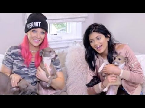 [FULL VIDEO] Kylie Jenner Ft. Jenna Marbles | Norman & Kermit's Playdate