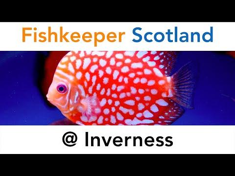 Fishkeeper Scotland @ Inverness