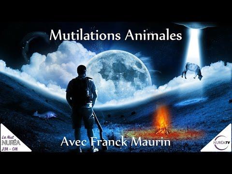 « Les Mutilations Animales » avec Franck Maurin - NUIT NUREA 11h de DIRECT -