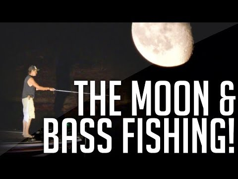 How Is BASS FISHING Impacted By MOON PHASES! || Understanding Moon Phases For Fishing