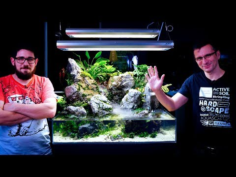planting-our-paludarium---the-rainforest-is-ready-with-the-waterfall