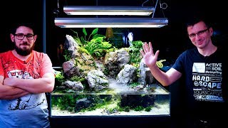 PLANTING OUR PALUDARIUM - THE RAINFOREST IS READY WITH THE WATERFALL