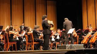 Video Concierto Orquesta Sinfónica de Oaxaca download MP3, 3GP, MP4, WEBM, AVI, FLV Agustus 2018