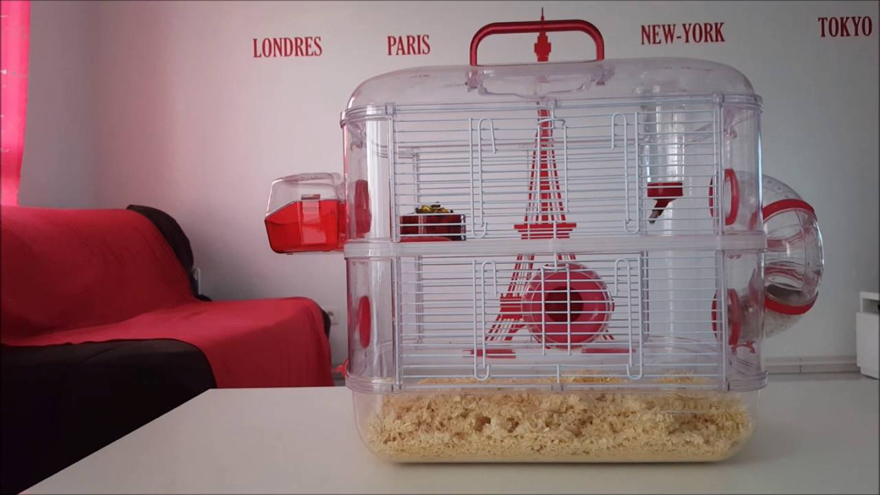 cage pour hamster rodylounge duo rouge youtube. Black Bedroom Furniture Sets. Home Design Ideas