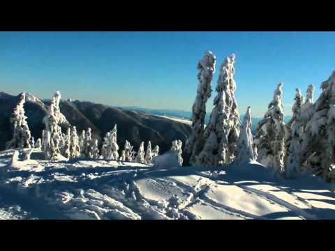 Hollyburn Mountain, West Vancouver, BC - 2015 winter