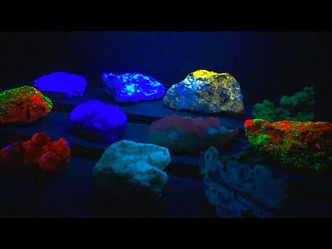 These Rocks are INSANE! Gem & Mineral Show Treasure Hunt.
