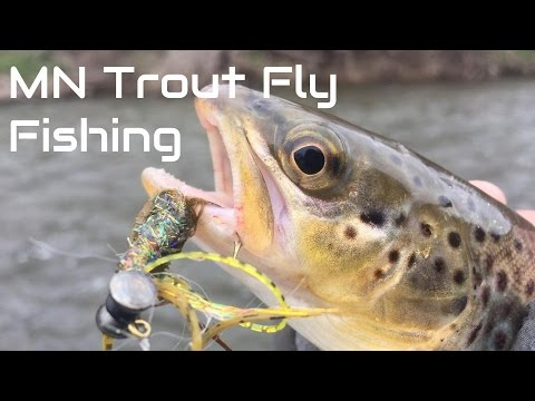 Minnesota trout fly fishing youtube for Trout fishing mn