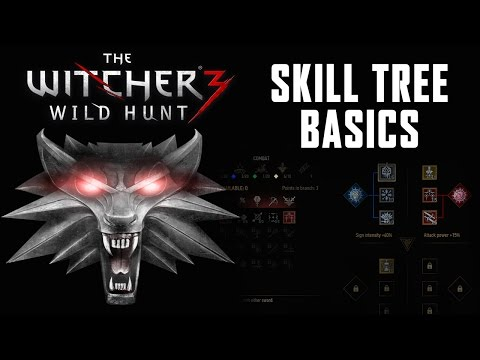 Witcher  Leveling Build