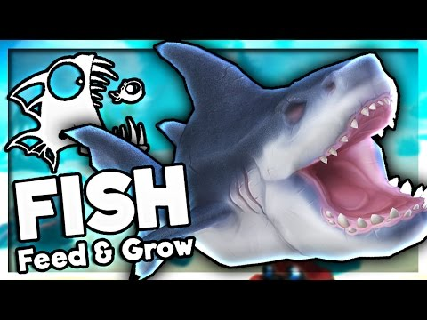 I ATE A SHARK! | Feed and Grow: Fish