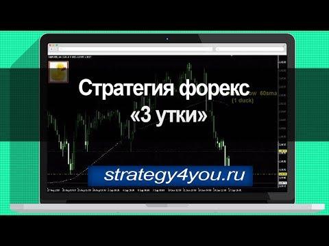 Стратегия форекс «3 утки»