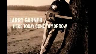Larry Garner - Funk It Up