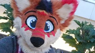 COME WALK AROUND ANTHROCON WITH MEEEEE!!