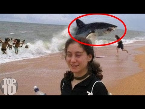 10 Unbelievable Shark Attacks
