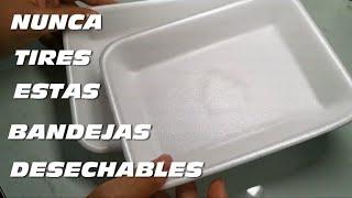 MANUALIDADES CON BANDEJAS DESECHABLES DE CARNE Y VERDURAS, RECICLA Y GANA DINERO CON ELLAS
