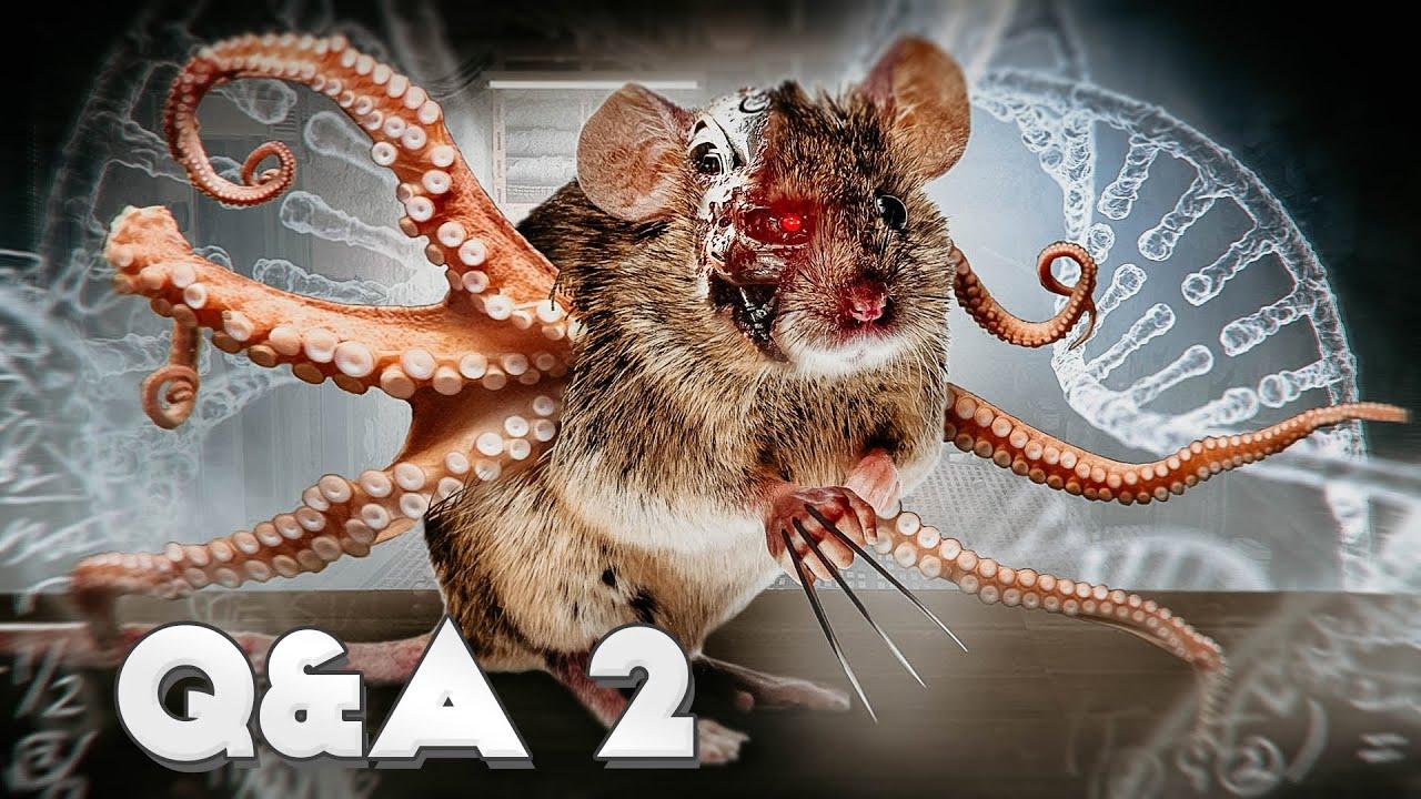 Какие стратегии используются для создания ГМО мышей [Настоящая Наука]