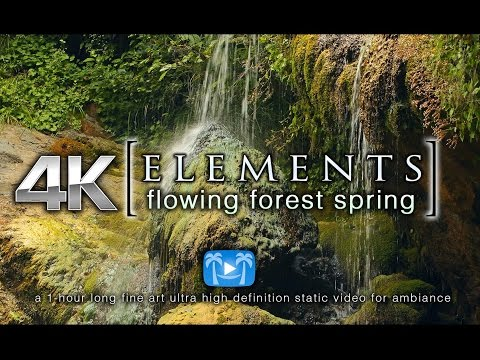 Flowing Forest Spring 4K ELEMENTS Fine Art Static Ambiance Video by Nature Relaxation HDR