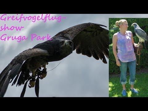 Grugapark Greifvogelflugshow