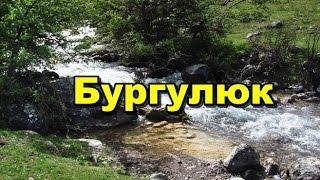 """БУРГУЛЮК "" в МАРТЕ. (слайдшоу)"
