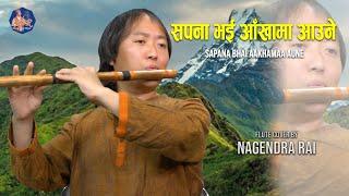 SAPANA BHAI AAKHAMA AAUNE FLUTE COVER BY(Nagendra Rai)||(FILM :DAKSHINA)