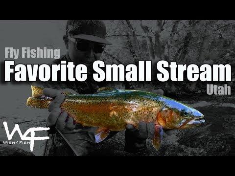 W4F - Fly Fishing
