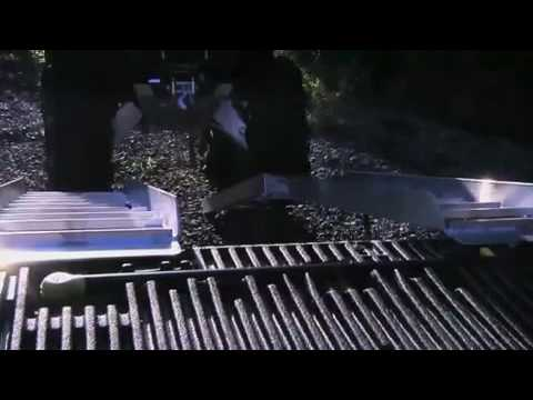 Loading Ramps by LongRamps.com on Fisher's ATV World
