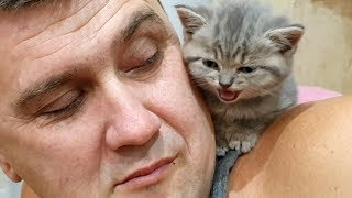 Kitten Street talking with dad and meows / 5 weeks after rescue - cute momments