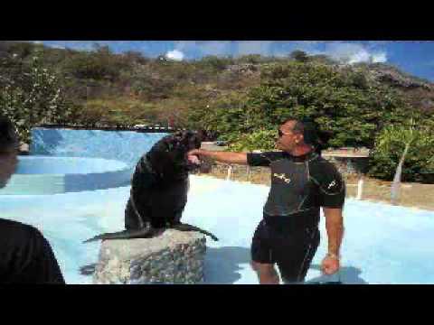 acuario de baconao_santiago de cuba_ciencia de cuba.wmv