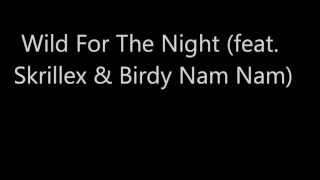 Wild For The Night Feat Skrillex Birdy Nam Nam