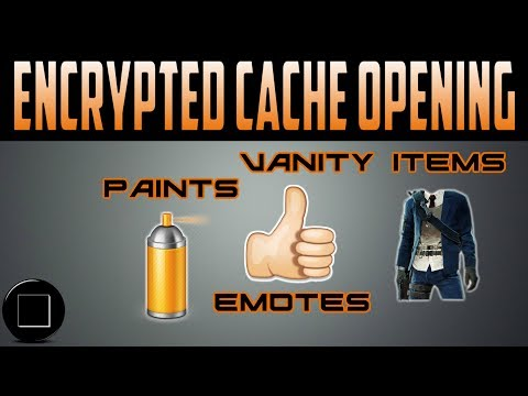 The Division - Encrypted Cache Opening
