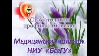 МК НИУ БелГУ Стоматология профилактическая