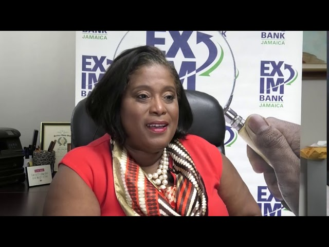 Jamaica's Survival: Financial Institutions in the Midst of COVID-19 | Beyond the Crisis  | CVMTV