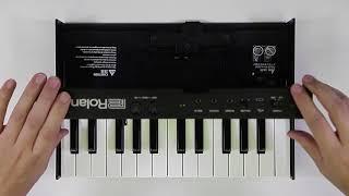 """""""Installation K-25m"""" Roland D-05 #05"""