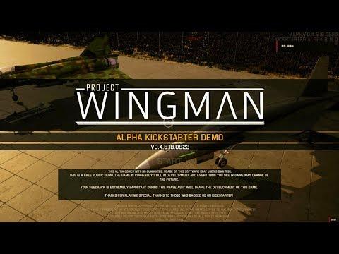 [例のグラボ] Project Wingman / プロジェクト ウィングマン [RX580化後]