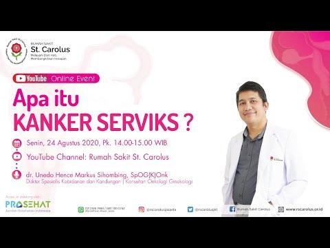 Penyakit Kanker Vagina - Gejala, Penyebab, Pengobatan ...