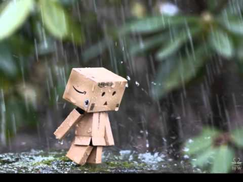 Rain story of Danbo's