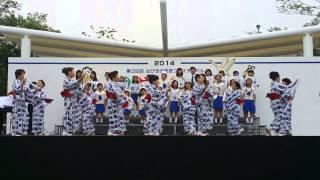 羽曳野市民フェスティバル会場で、竹内街道わらべ歌を披露しました。歌 ...