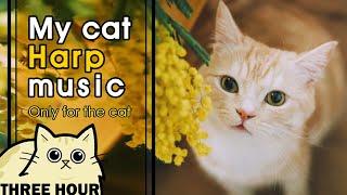 [MY CAT HARP MUSIC] 고양이가 좋아하는 음악 봄을 닮은 달달한 하프소리 (lullaby for a cat, ねこハーフおんがく)