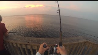King Mackeral Fishing Off The Pier: GoPro