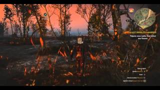 TEST 3: The Witcher III Wild Hunt gameplay PC ULTRA