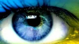 Steve Miller Shannon`s eyes