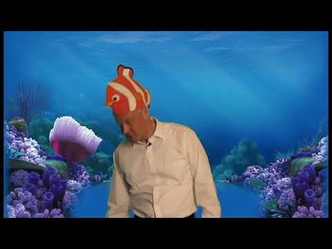 2017 Raleigh Chamber of Commerce Campaign Kickoff:  Finding Dory